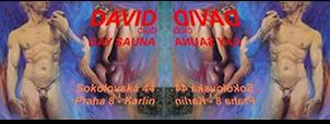 Sauna David